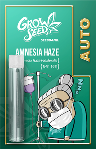 GrowSeed - AMNESIA HAZE auto