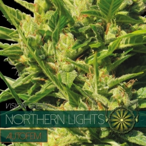 Northern Lights Auto
